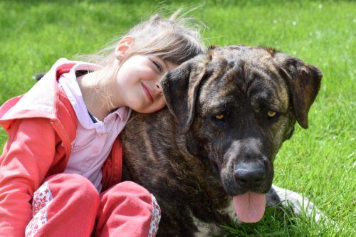 dog scared of kids_canna-pet